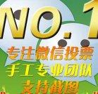 网络微信投票介绍