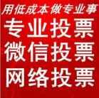 团队竞选投票拉票宣言介绍
